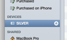 iPod in the iTunes window
