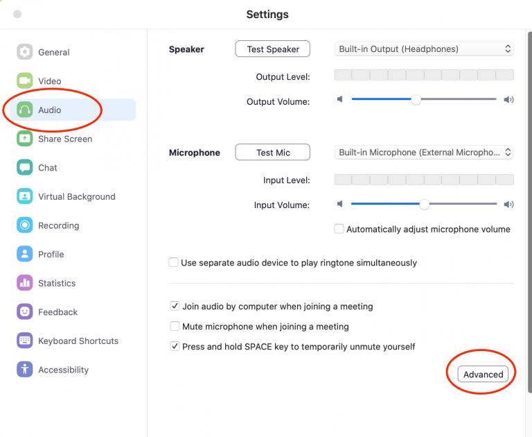 Zoom auddio Settings options