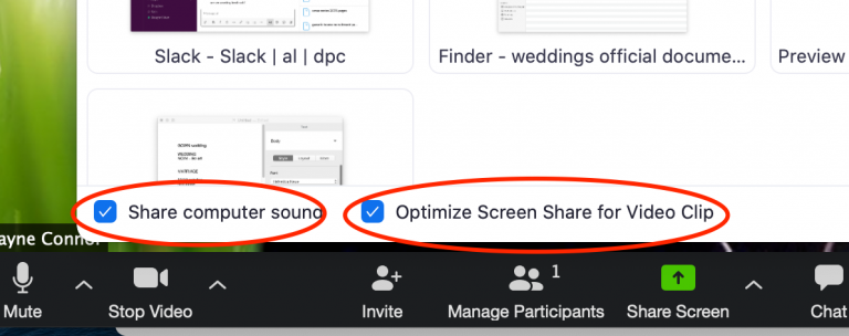Zoom Share Screen options
